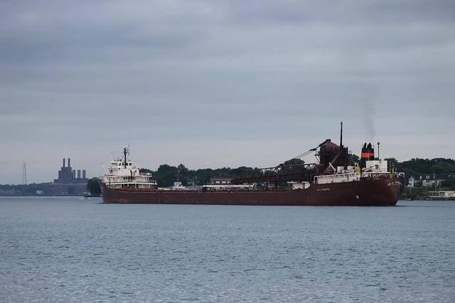 Cargo Ship Travel Reviews