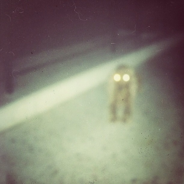 #spooky #dog #joy #ghost #shutter #mode