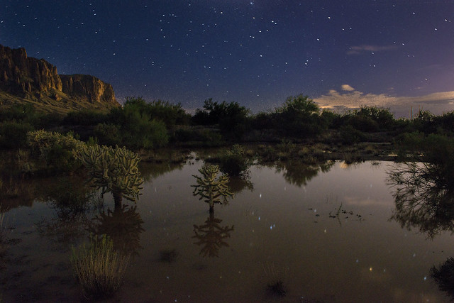 desert at night after rain
