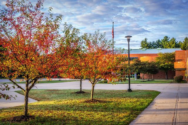 A Beautiful Morning at School
