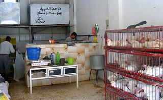 volailler - Amman