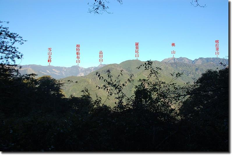 710林道遙望武陵四秀 1-1