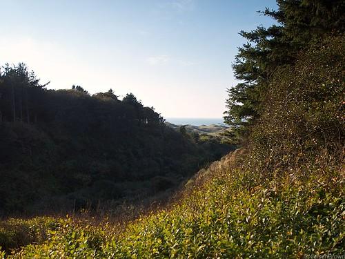 Tornby Gorge