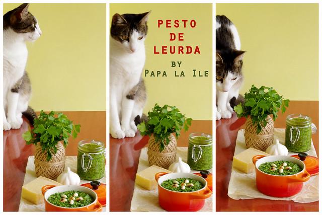 Pesto de leurda (11)