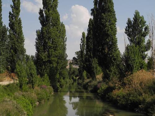 Sardón de Duero. Canal del Duero