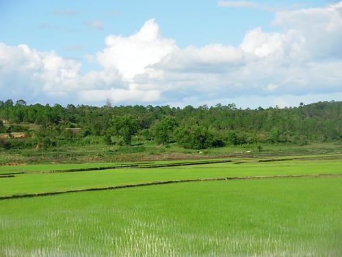 Vang Vieng-Phonsavan-route (67)