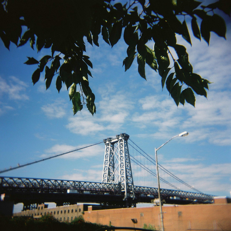 Brooklyn Diana