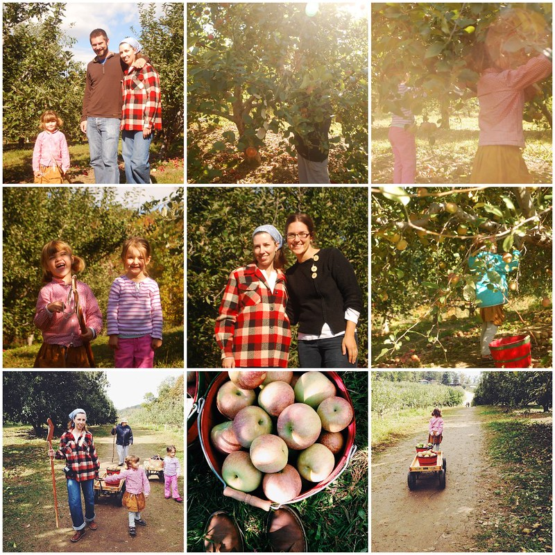 apple picking with Amanda
