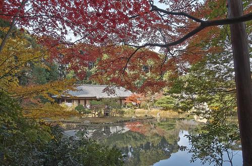 【写真】2013 紅葉 : 浄瑠璃寺/2019-08-22/IMGP3555