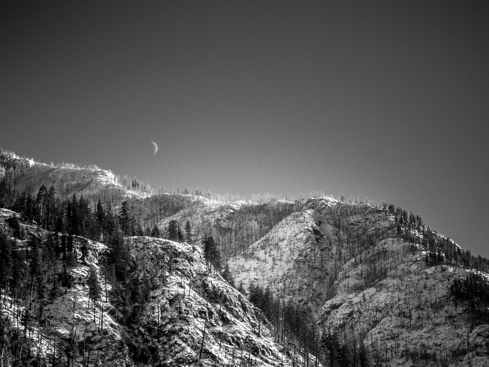 Moon Over Rex Creek