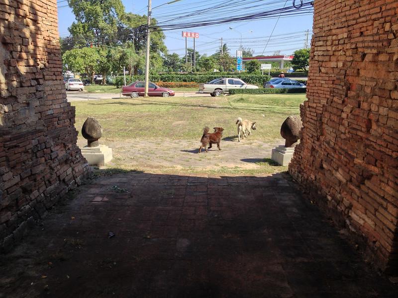 Adios, Wat Chet Yot