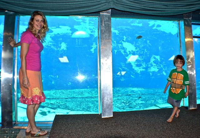Weeki Wachee underwater mermaid theater