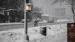 Scenes from a Winter Morning
