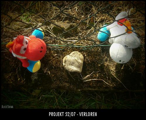 Projekt 52/07 - Verloren