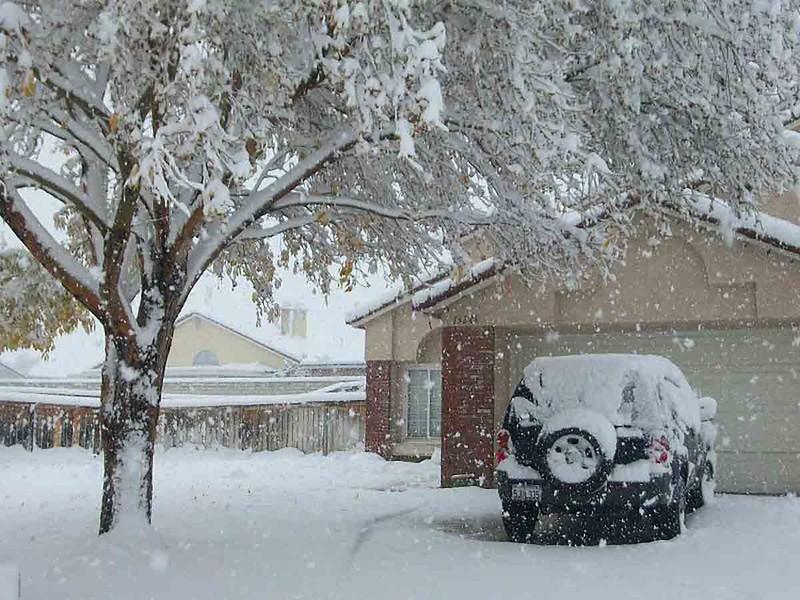 Snowy Suburban House
