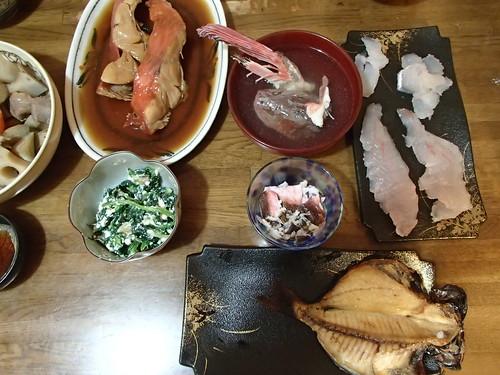 再来釣行在真鶴 日本的海上 - naniyuutorimannen - 您说什么!