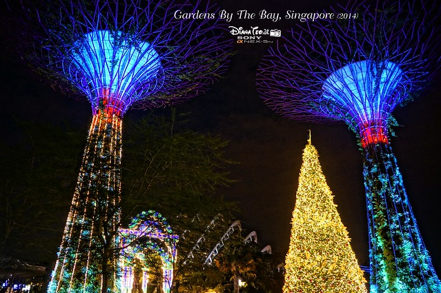 Singapore - Gardens By The Bay 04