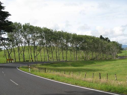 New Zealand 802