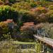 大杭橋と湯の瀬温泉跡