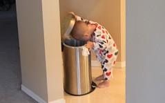 Lulu checking garbage