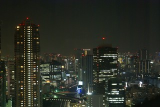 TOKYO VIEW FROM PARK HOTEL MINATO