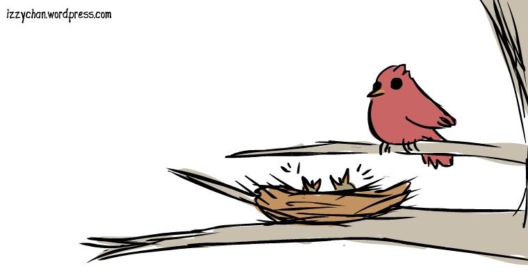 bird nest babies