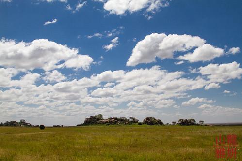 africa landscape tanzania safari tz kopje serengetinationalpark shinyanga seroneraregion tzday03 africanwildcatsexpeditions