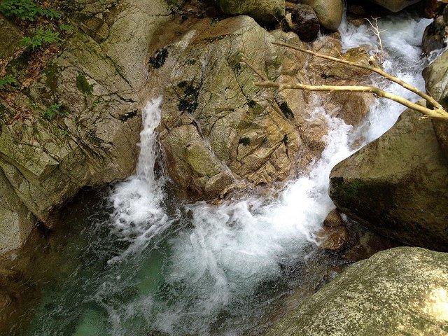 竜ヶ岳 魚止滝前の滝