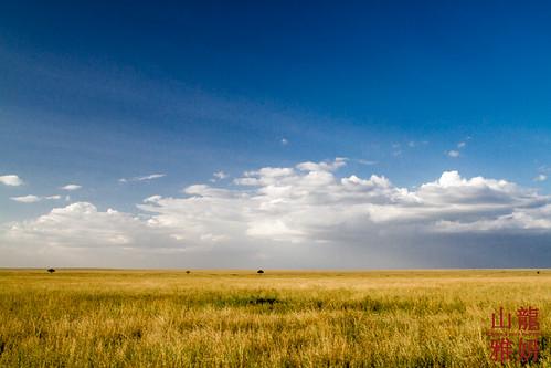 africa landscape tanzania safari serengetinationalpark shinyanga seroneraregion tzday02 africanwildcatsexpeditions