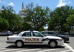 US Capitol Police - 2011 Ford Crown Victoria K-9 unit (4)