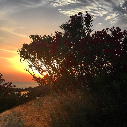 #sunset #sunrise #sun #igersroma #igersclm #pretty #beautiful #red #orange #pink #sky #skyporn #cloudporn #nature #clouds #horizon #photooftheday #instagood #gorgeous #euapiedi #view #igersalbacete #morning #silhouette #instasky #igersitalia #igers #igers