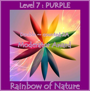 RoN_7Purple_Mod_dbl