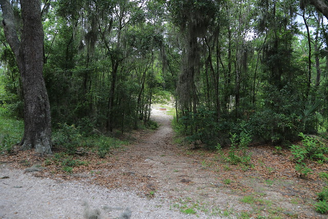 Jacksonville Arboretum On June 9th 2013 We Took A Trip Ov Flickr Photo Sharing