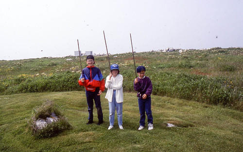 The kids on Machias Seal Island