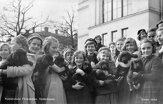 School girls with puppies at the municipal girl's school in Söderhamn, Hälsingland, Sweden