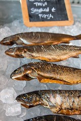 smoked fish, fish, fish, seafood, food, shishamo,
