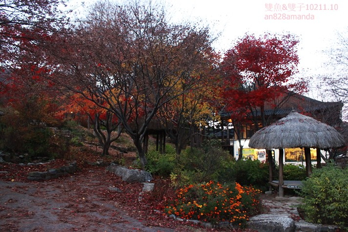 韓國京畿道晨靜樹木園