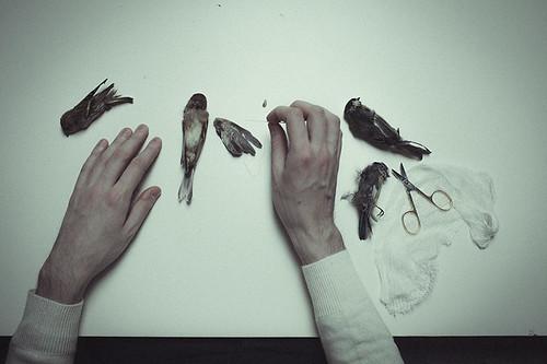 The Anatomy Of Melancholy.