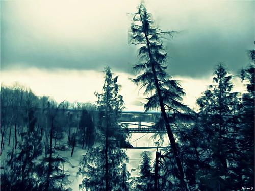 trees winter sky snow tree green art clouds canon landscape explore