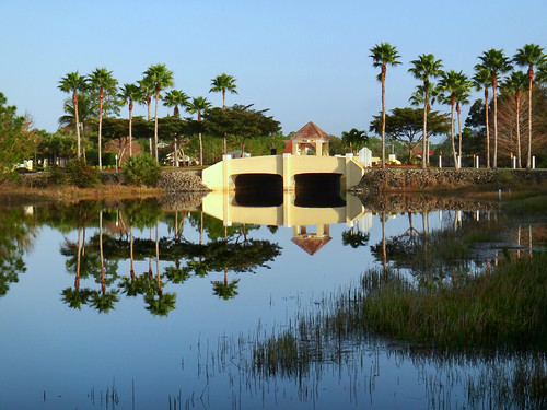 bridge usa lake reflection building reflections landscape us unitedstates florida lakeshoredrive palmtrees westcoast reflexos reflets reflejos reflexionen bonitasprings sandraleidholdt sandyleidholdt