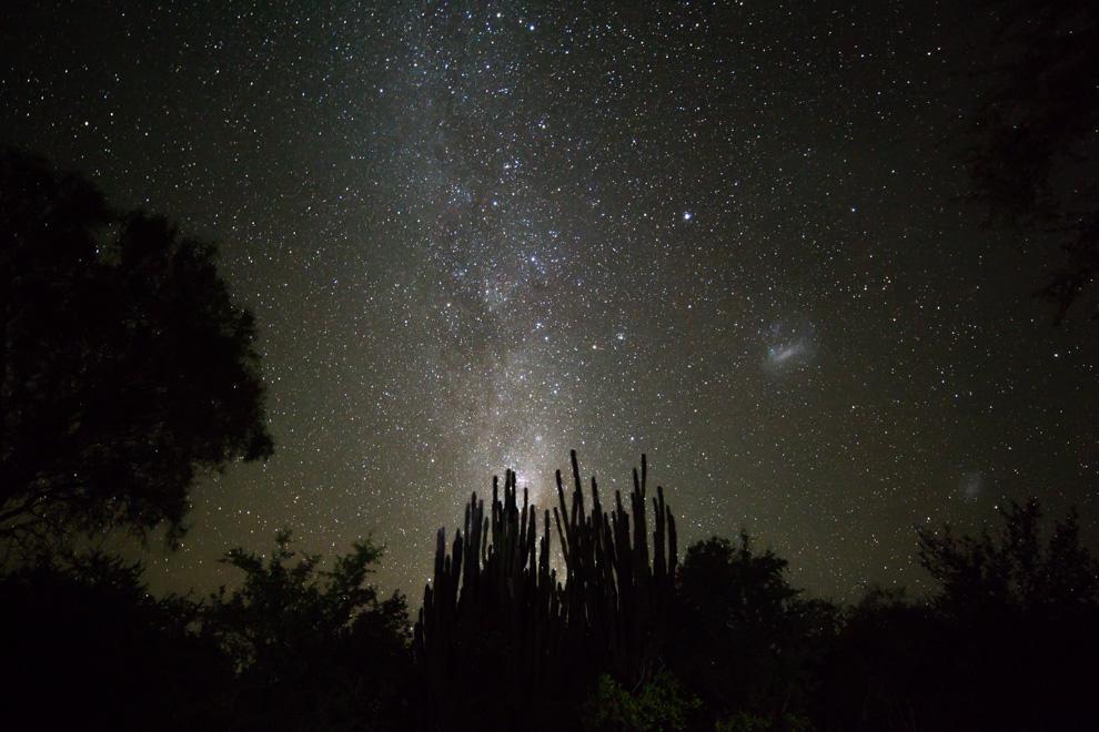 La vía láctea fotografiada durante una noche de cielo abierto en uno de los campamentos de la expedición por la región chaqueña. (Tetsu Espósito)
