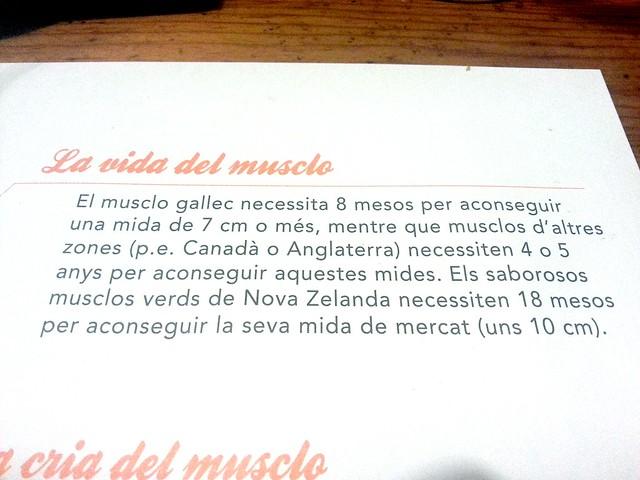muscle muscleria restaurante