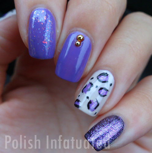 purple skittled cheetah