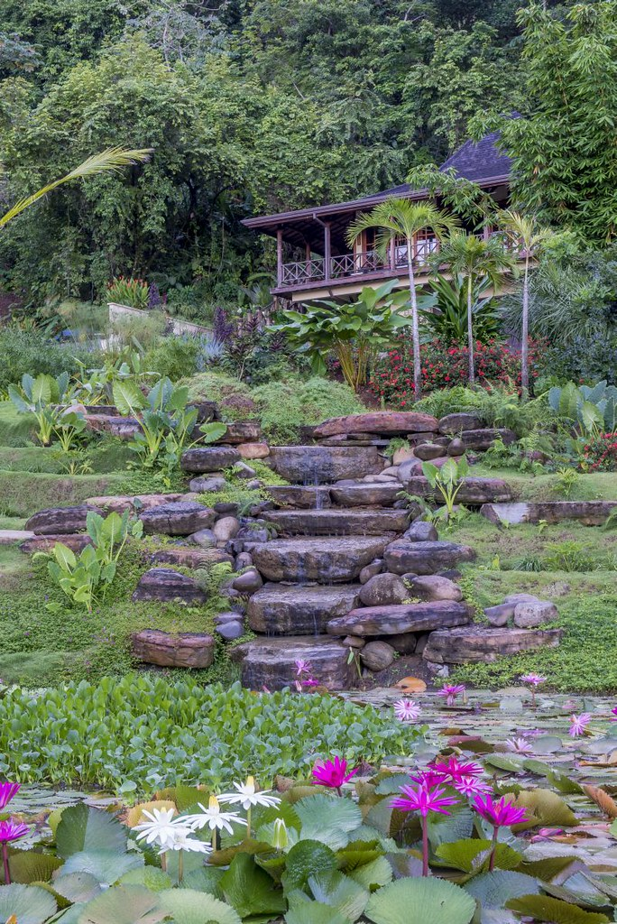 Guest house overlooking terrace plantings, waterfall, ponds and garden