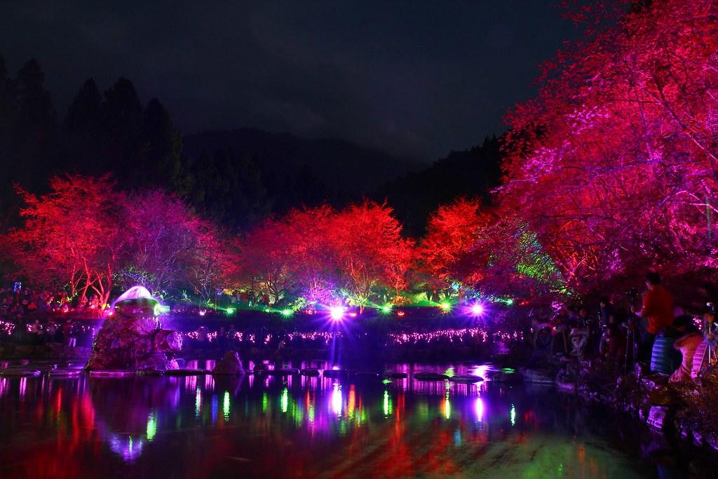 九族櫻花祭 (94)