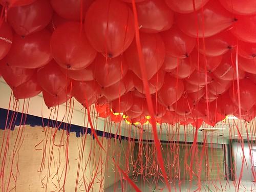 Heliumballonnen Bedrukt Bruna Nijntje Hoog Catherijne Utrecht
