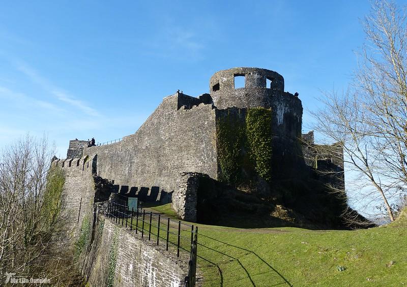 P1110014 - Dinefwr Castle