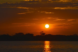 Sunset in the Amazon