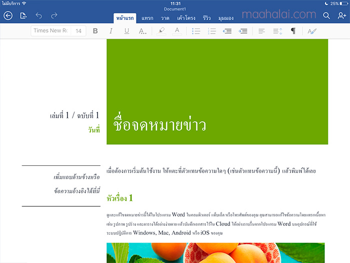 ipad microsoft office word