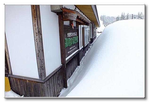 自然館前にうず高く積もった雪.今にも屋根に届きそう.
